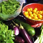 Summer Veggie Quinoa Salad